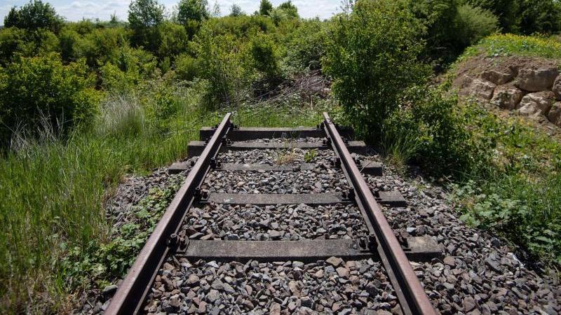 Das Gleis einer stillgelegten Bahnstrecke. Foto: Marijan Murat/dpa/Archivbild