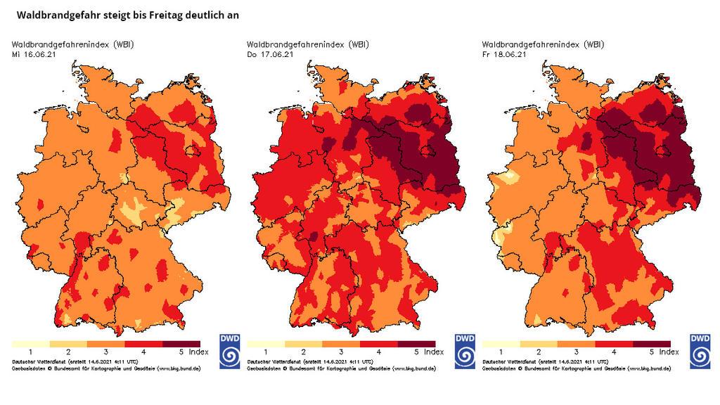 Waldbrandgefahrenindex DWD für Mittwoch, Donnerstag und Freitag
