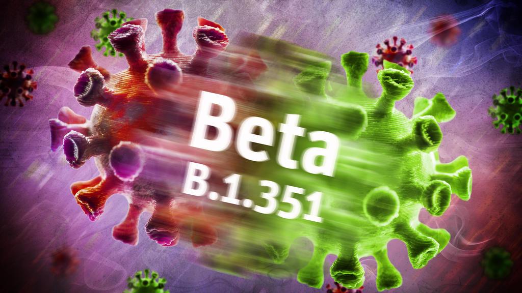 Symbolfoto von mutiertem Coronavirus der Beta-Variante B.1.351.