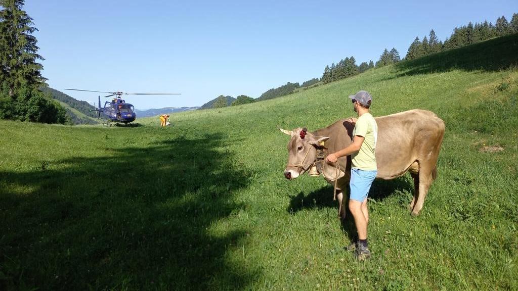 Quelle: Privat - Bauer Stefan Hölzler rettete seine Kuh mit einem Helikopter aus einer Schlucht
