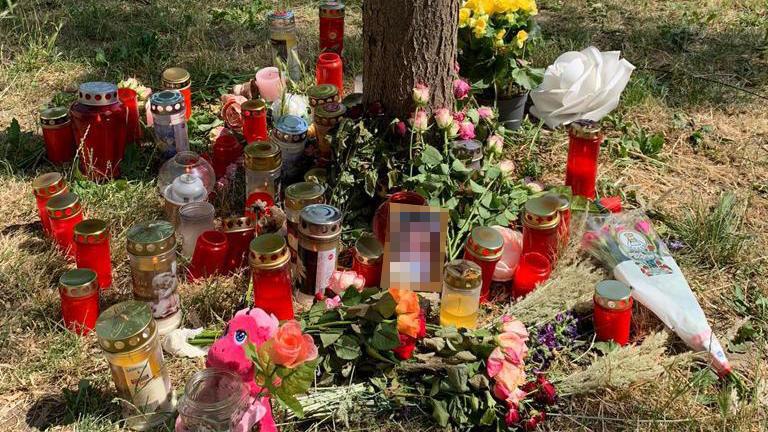 Die Leiche der 13-Jährigen lehnte an einem Baum in Wien.