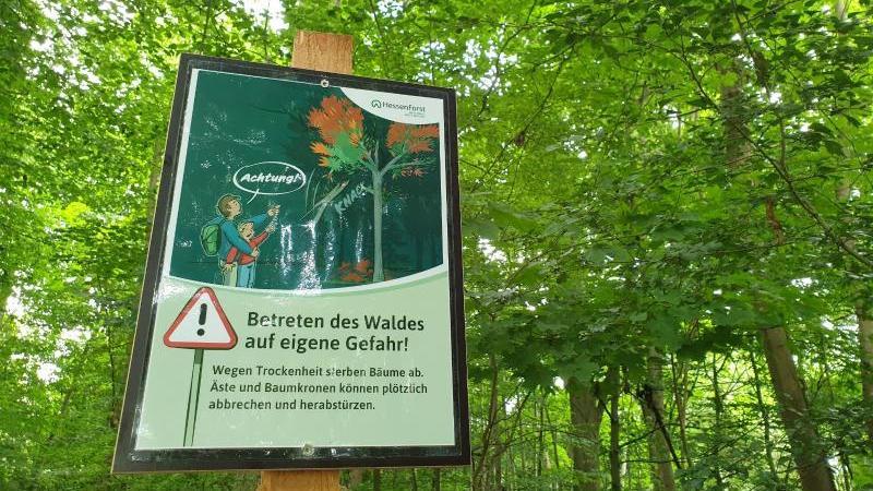 Der Landesbetrieb Hessen Forst warnt vor Astbruch-Gefahr in einem Waldstück in Bad Nauheim.