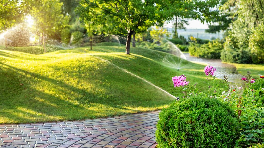 Bewässerungs-Systeme in Haus und Garten: Was ist sinnvoll?