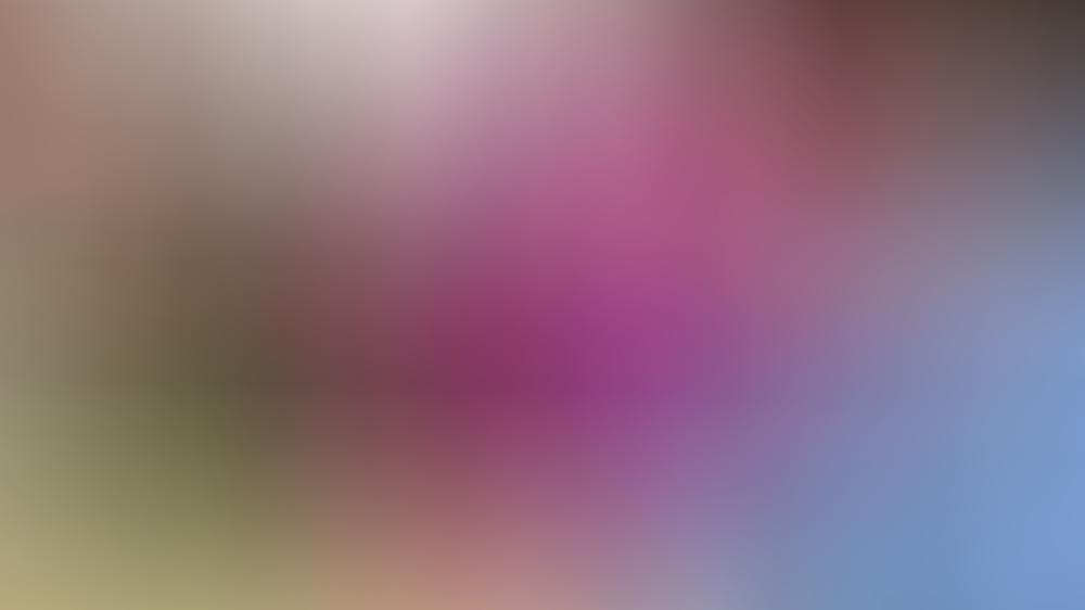 Herzogin Kate und Prinz William auf der Tribüne von Wimbledon.