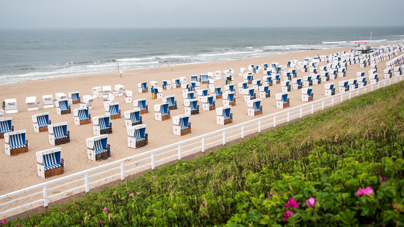 Viele Strandkörbe für viele Touristen auf Sylt.