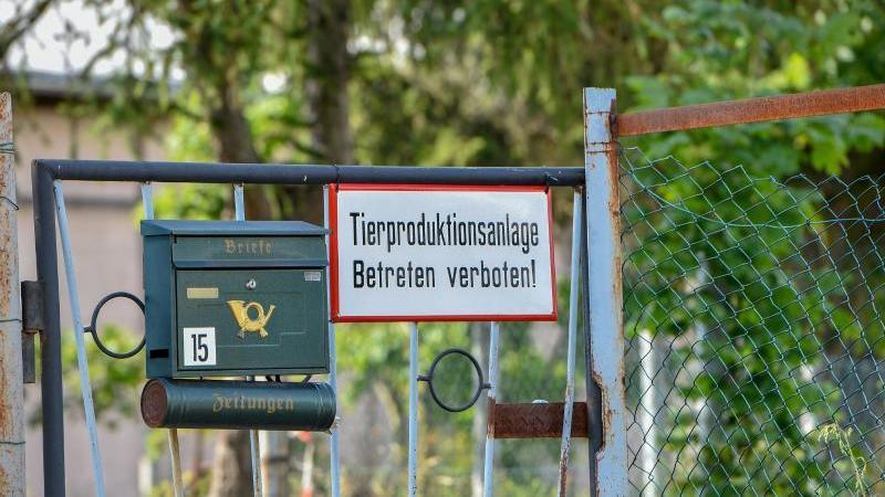 Eingang zu einem Schweinemastbetrieb. Foto: Toni Lehder/dpa/Symbolbild