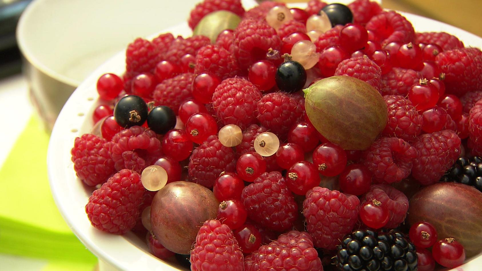 Mit Himbeeren, Brombeeren, Stachelbeeren und Johannisbeeren lassen sich süße, vitaminreiche Leckereien zaubern.