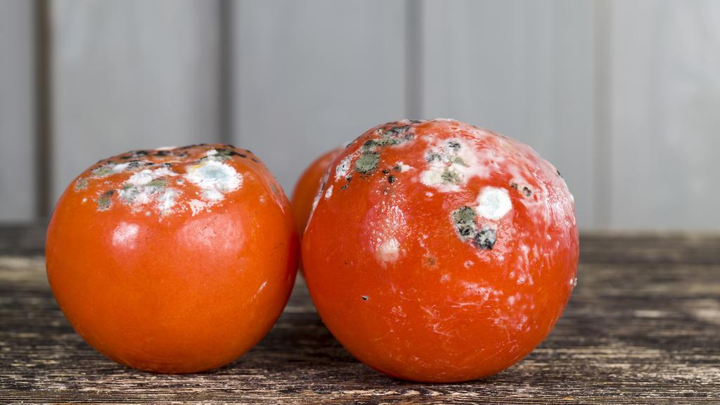 Öko-Test: Tomatenmark