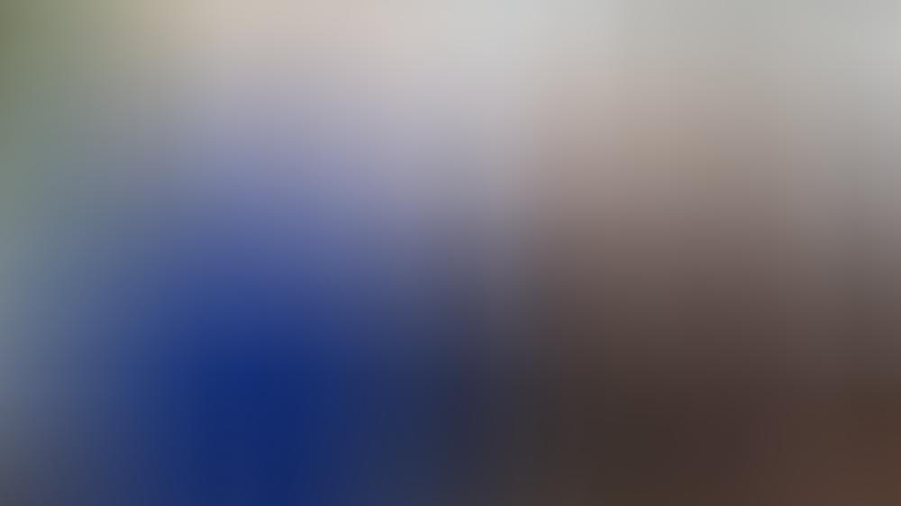 Prinz William und Herzogin Kate mussten dieses Jahr nicht in die Ferne schweifen für ihren Urlaub