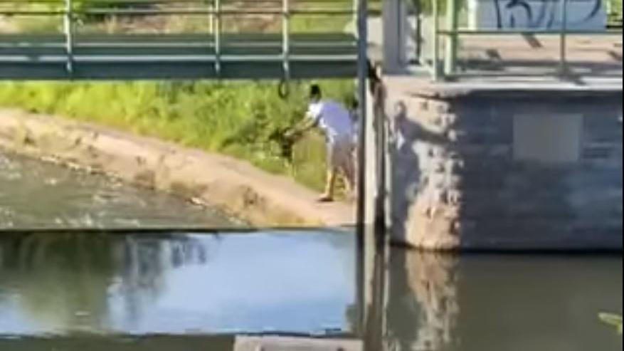 Mann in Eisenach wirft Welpen in den Fluss