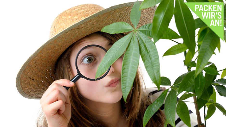 Kinder spielen gern Detektiv - umso besser, wenn Sie dabei der Umwelt was Gutes tun