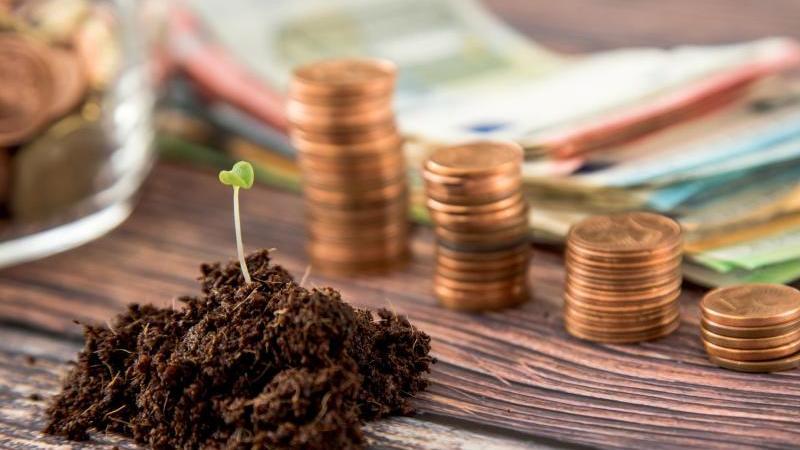 Es gibt wenig Fondspolicen, die ethisch-ökologische Aspekte berücksichtigen und gleichzeitig für Sparer attraktiv sind. Foto: Christin Klose/dpa-tmn