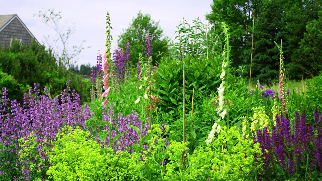 Nachhaltig Gärtnern ist gut für die Umwelt.