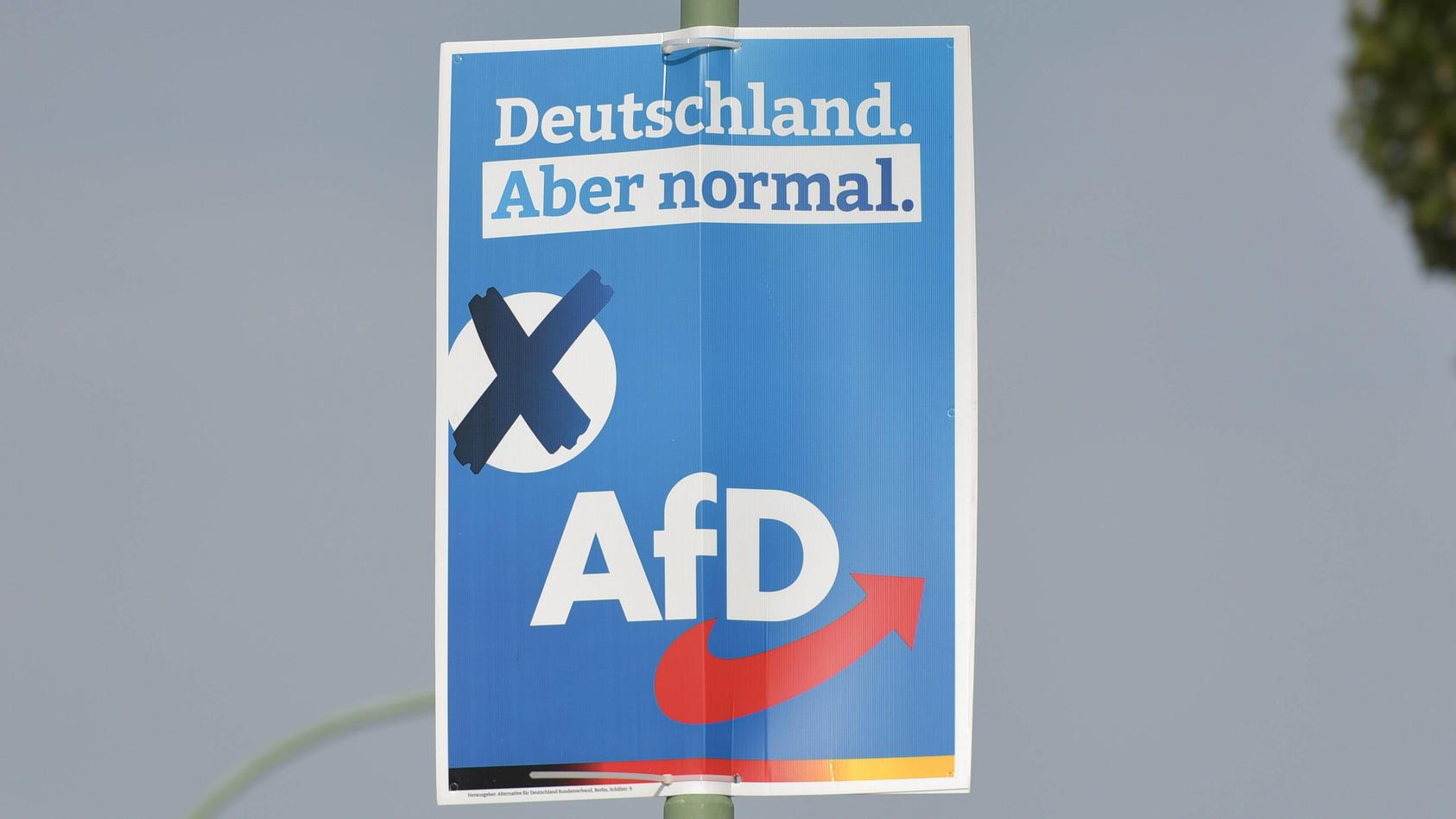 Hat die AfD illegale Parteispenden für Wahlplakate angenommen?