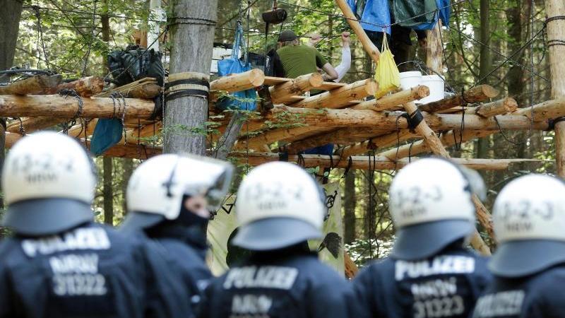 Polizisten stehen im Hambacher Forst vor einer Plattfrom zwischen Bäumen. Foto: David Young/dpa/archivbild