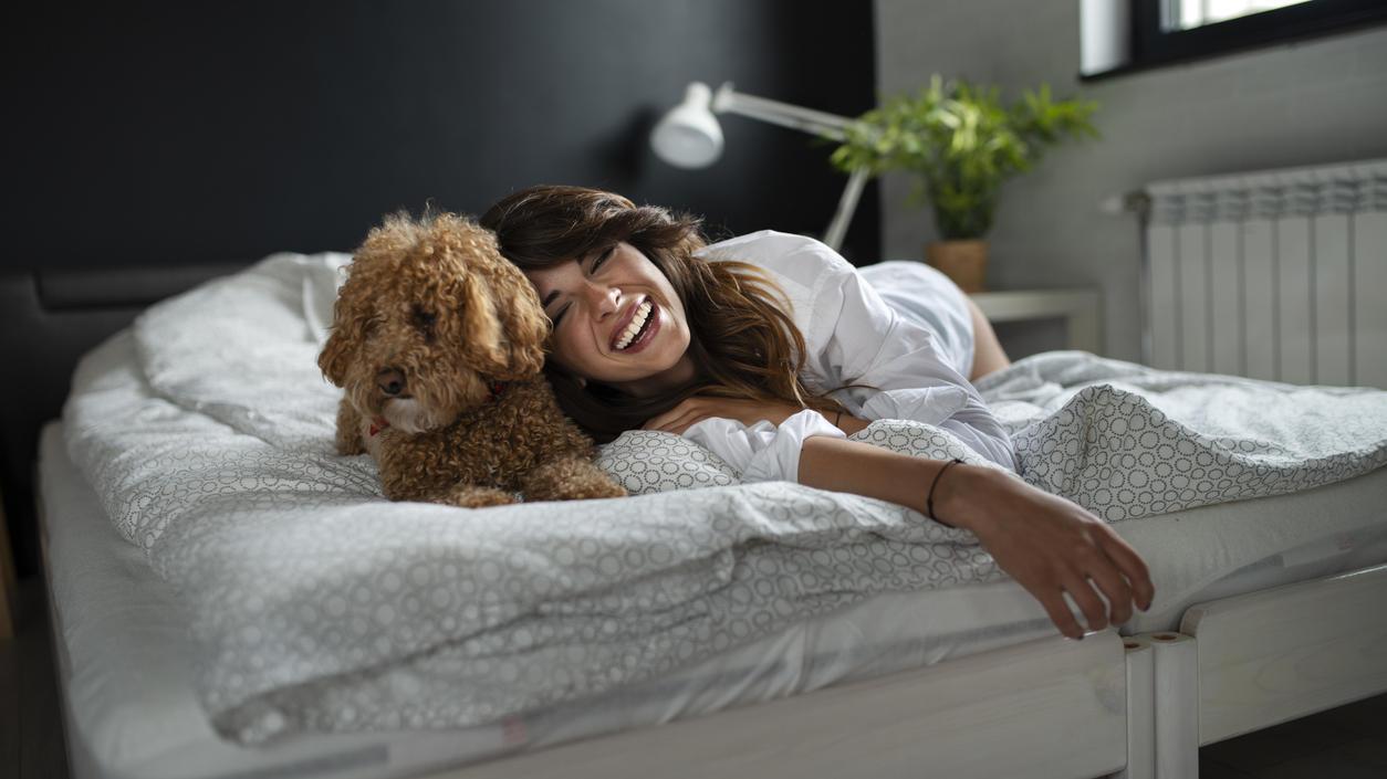 Jetzt haben wir es schwarz auf weiß: Hunde tun nicht nur unserer Seele gut, sondern sogar auch unserem Schlaf.