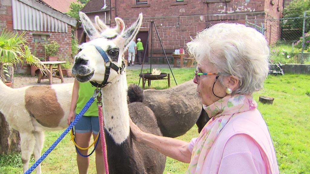 Demenz-Patientin Ingrid geht hier auf Tuchfühlung mit Lama Oscar.