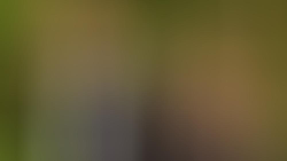Prinz Harry und Herzogin Meghan zeigen sich nur noch selten gemeinsam bei Veranstaltungen.