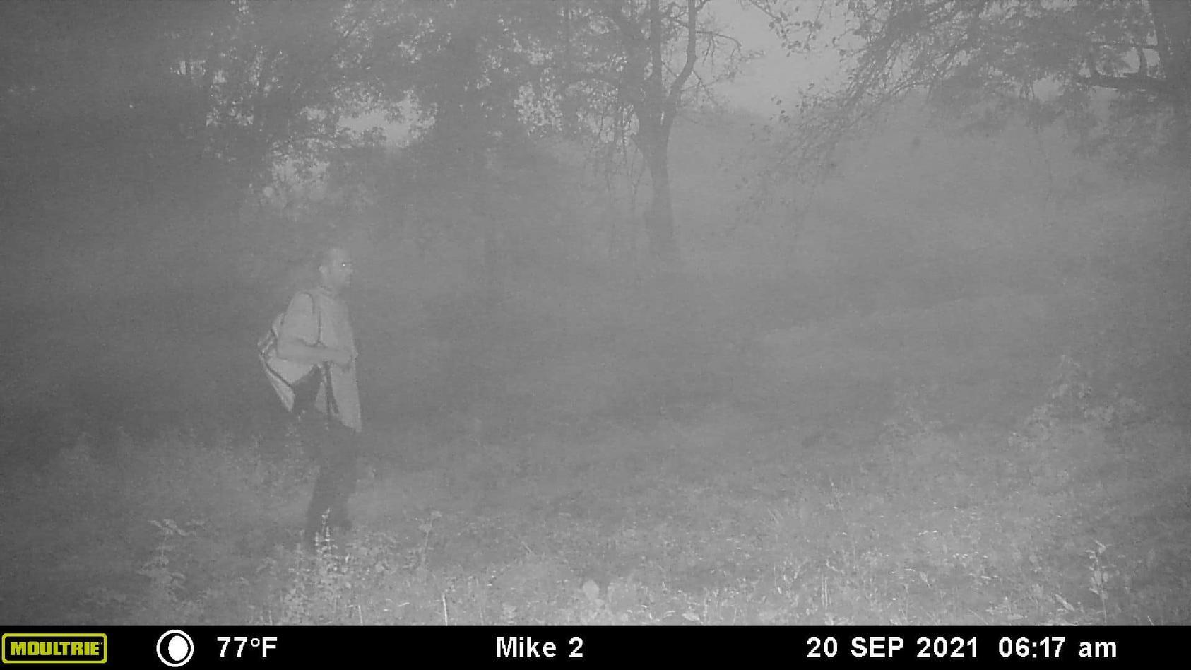 Dieses Bild einer Wildkamera könnte den gesuchten Brian Laundrie zeigen.