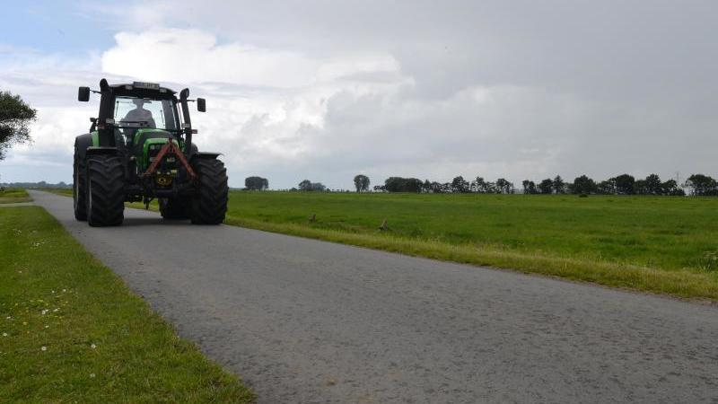 Symbolbild: Ein Landwirt fährt mit seinem Trecker über einen Wirtschaftsweg. Foto: Carmen Jaspersen/Archiv