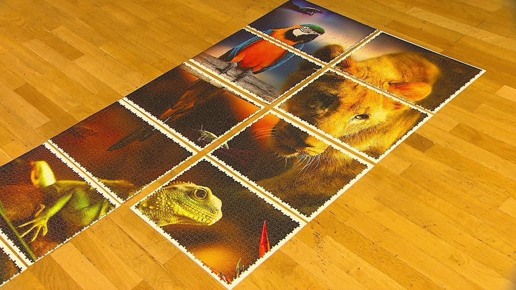 Das große Puzzle wurde in 112 kleinere Stücke aufgeteilt.
