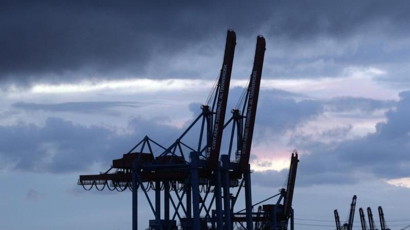 Hochgeklappte Containerbrücken stehen am Containerterminal Hamburg Altenwerder. Foto: Tobias Kleinschmidt/dpa/Archivbild