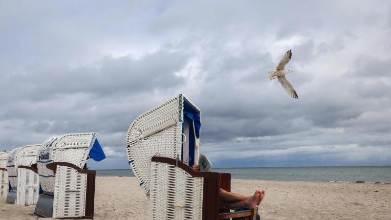 Ein Urlauber liest Zeitung in seinem Strandkorb an der Ostsee. Foto: Christian Charisius/dpa/Archivbild