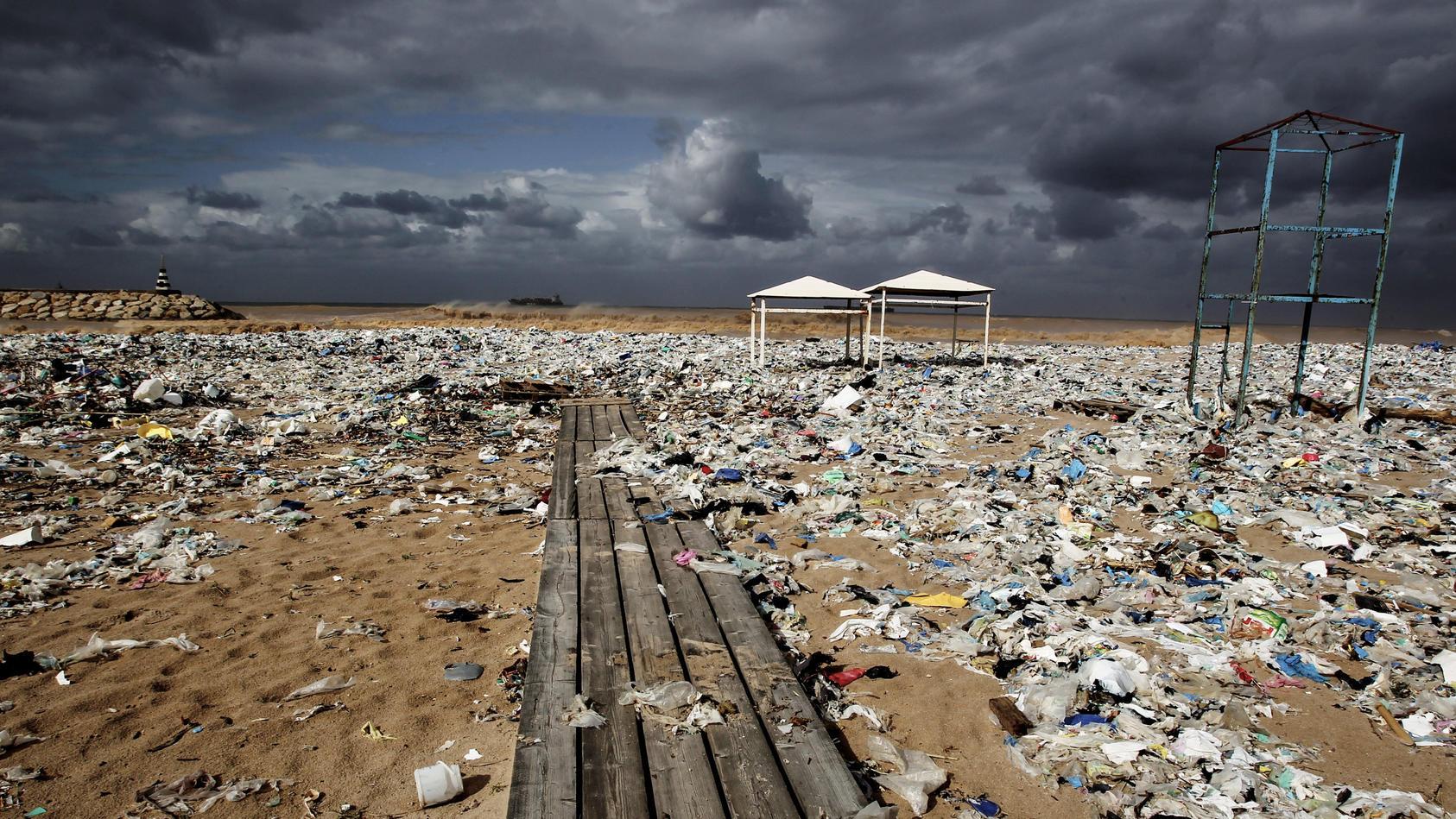 mull-abgase-giftige-chemikalien-alle-menschen-haben-das-recht-ohne-sie-in-einer-gesunden-und-sauberen-umwelt-zu-leben