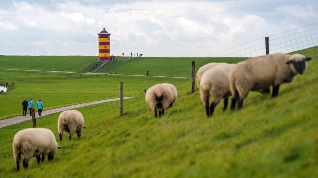 Der Pilsumer Leuchtturm in Ostfriesland ist ein beliebtes Ausflugsziel zu jeder Jahreszeit.
