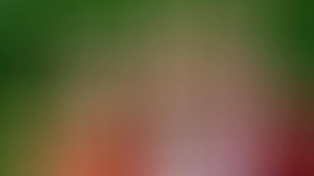 Kronprinzessin Amalia wird ihrem Vater, König Willem-Alexander, eines Tages auf den niederländischen Thron folgen.