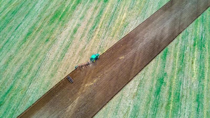 Ein Traktor zieht Pflug und Egge über ein abgeerntetes Feld. Foto: Jens Büttner/dpa-Zentralbild/dpa/Symbolbild