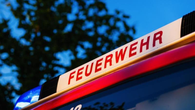 das-blaulicht-leuchtet-auf-dem-dach-eines-einsatzfahrzeugs-der-feuerwehr-foto-philipp-von-ditfurthdpasymbolbild