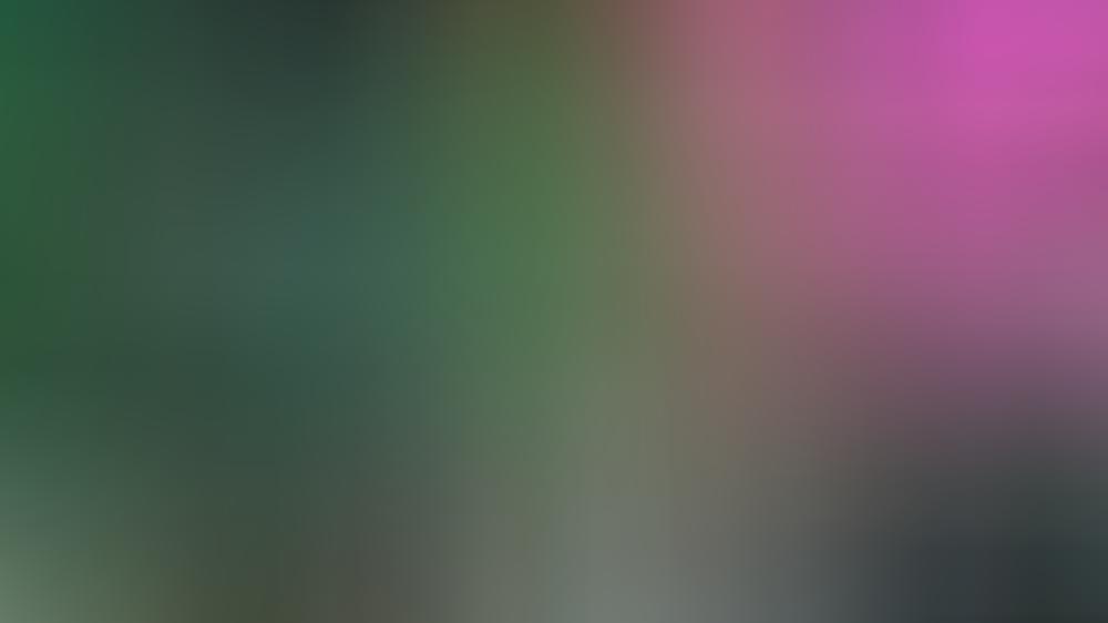 das-gorilla-maskottchen-des-start-ups-scooper