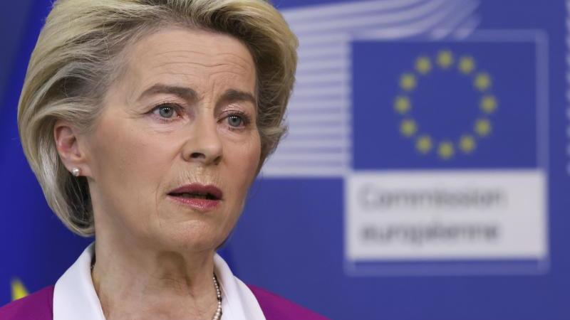 polens-ministerprasident-mateusz-morawiecki-stie-im-europaparlament-auf-heftigen-widerstand-foto-ronald-wittekpool-epaapdpa