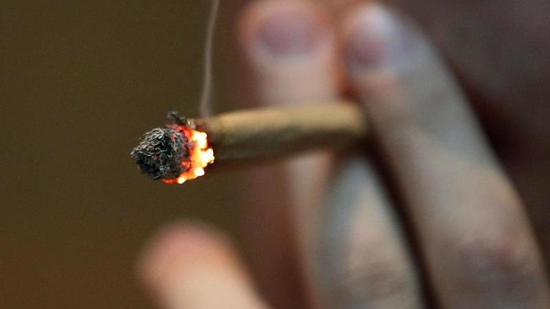 junge-menschen-sind-laut-einer-umfrage-fur-die-cannabis-legalisierung-foto-oliver-bergdpa