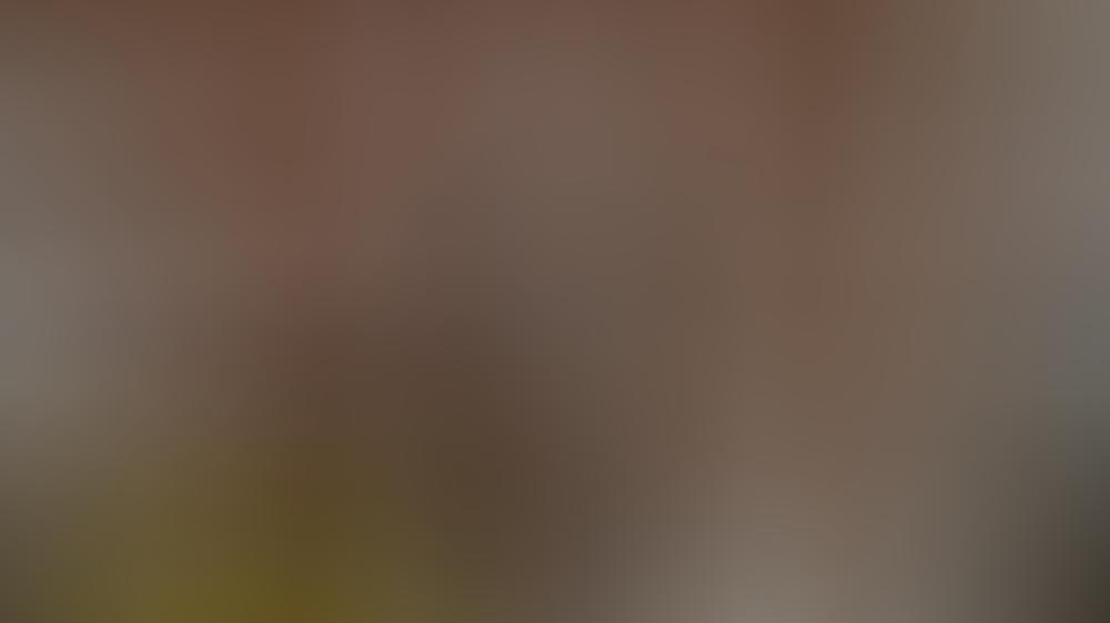 vor-allem-auf-das-leben-junger-menschen-haben-soziale-medien-einfluss