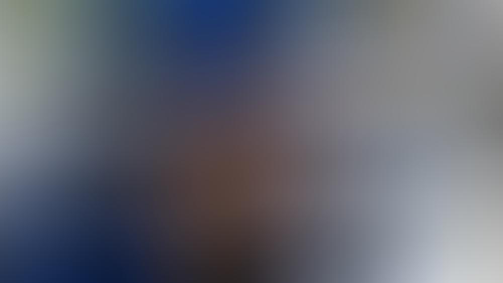 die-queen-ist-im-video-call-recht-amused