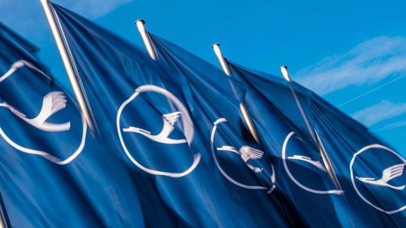 fahnen-mit-dem-logo-der-fluggesellschaft-lufthansa-wehen-im-wind-foto-andreas-arnolddpaarchivbild