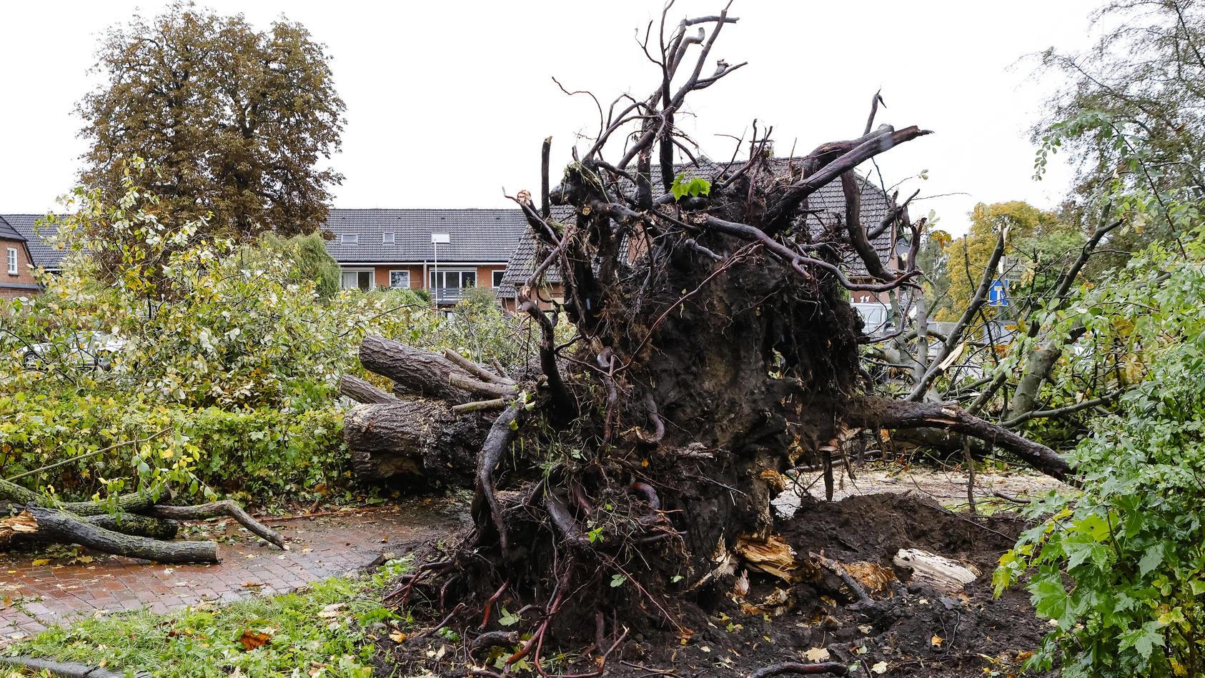 wirbelsturm-richtet-schaden-an-schon-wieder-ein-tornado-bei-kiel