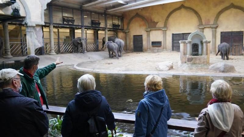 soren-reichardt-2vl-leiter-der-zooschule-im-tierpark-hagenbeck-spricht-zu-senioren-foto-marcus-brandtdpaarchivbild