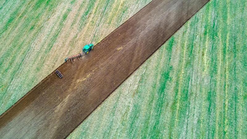 ein-traktor-zieht-pflug-und-egge-uber-ein-abgeerntetes-feld-foto-jens-buttnerdpa-zentralbilddpasymbolbild