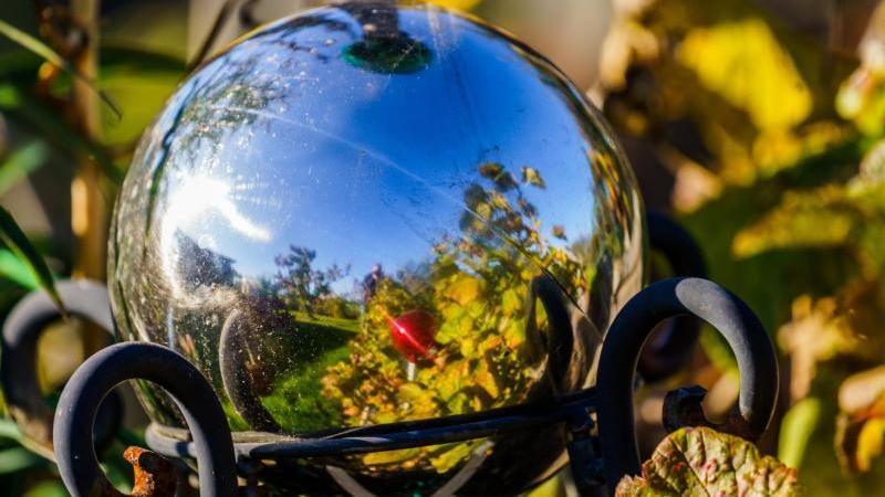 ein-kleingarten-spiegelt-sich-in-einer-deko-kugel-foto-andreas-arnolddpa