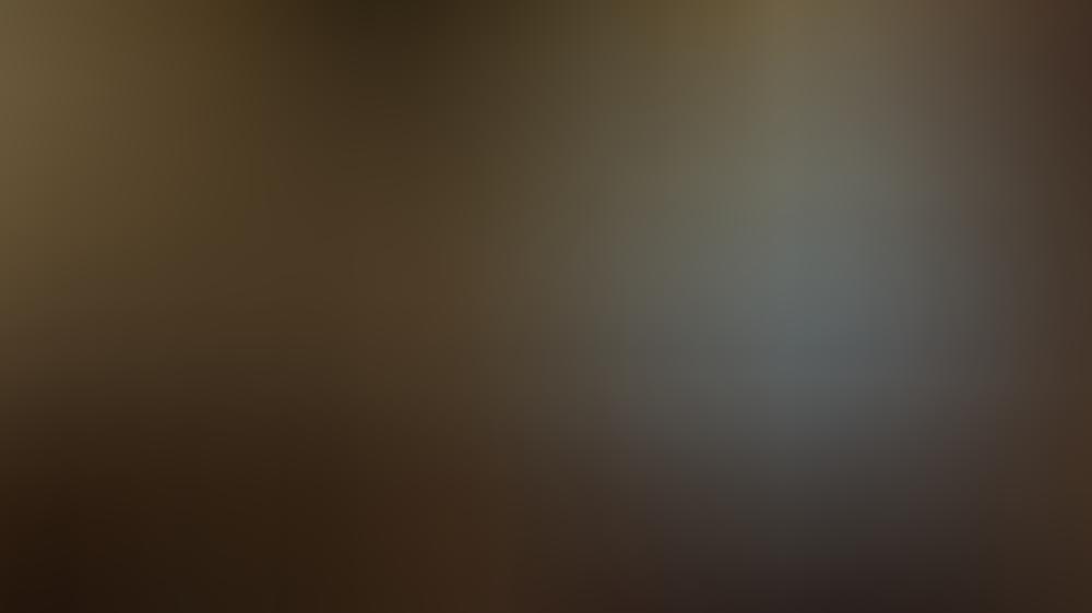 queen-elizabeth-ii-in-einem-videocall-aus-schloss-windsor