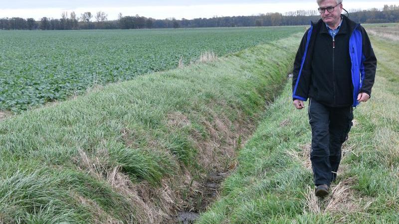 landwirt-burkhard-haseloff-geht-am-rande-eines-nicht-mehr-gestauten-wassergrabens-foto-bernd-settnikdpa-zentralbildzb