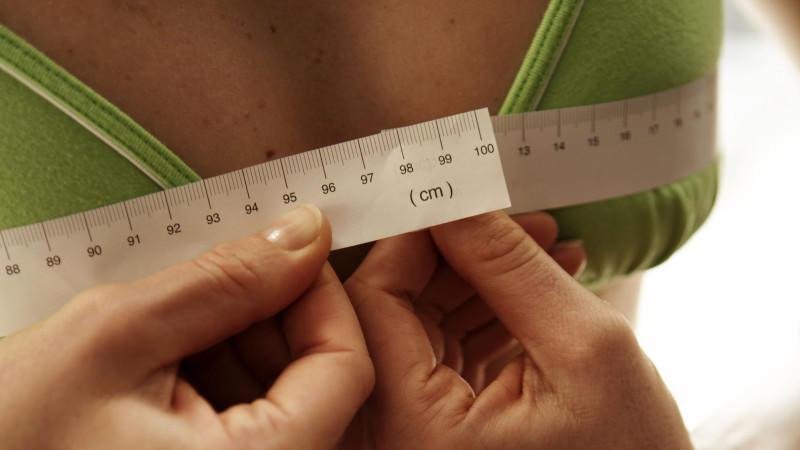 Bilder körbchengröße vergleich Die richtige