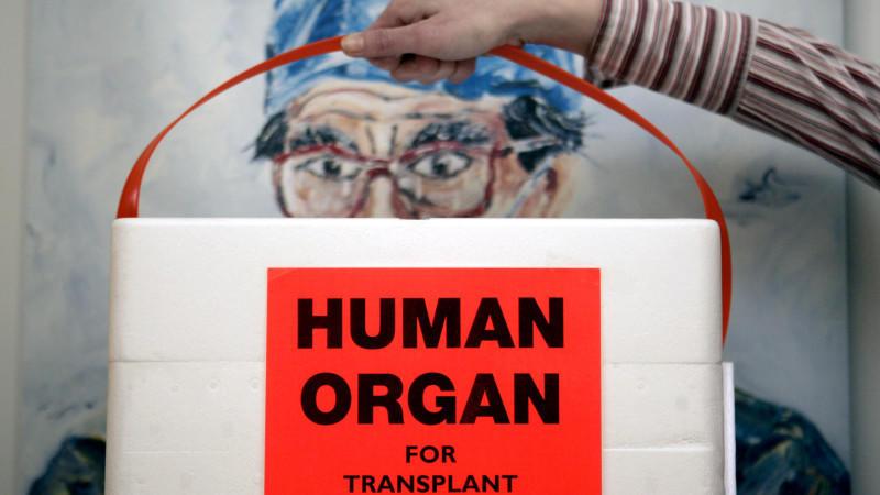 ARCHIV - Eine Mitarbeiterin der Deutschen Stiftung für Organtransplantation in Neu-Isenburg (Kreis Offenbach) hält am 18.02.2005 in einem Büro der Organisation eine spezielle Kühlbox für Spenderorgane vor das Bild eines Chirurgen. Angesichts der Leip