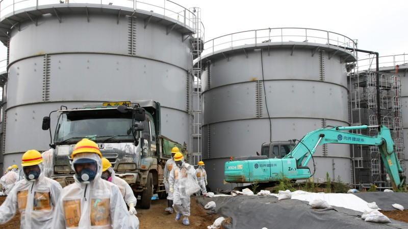 Tiere Fukushima