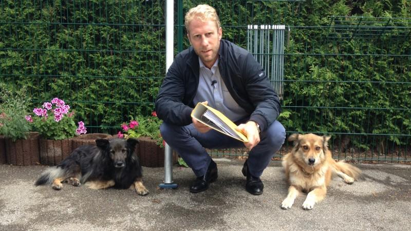 Christopher Posch Spezial - Meine besten Fälle: Tiere