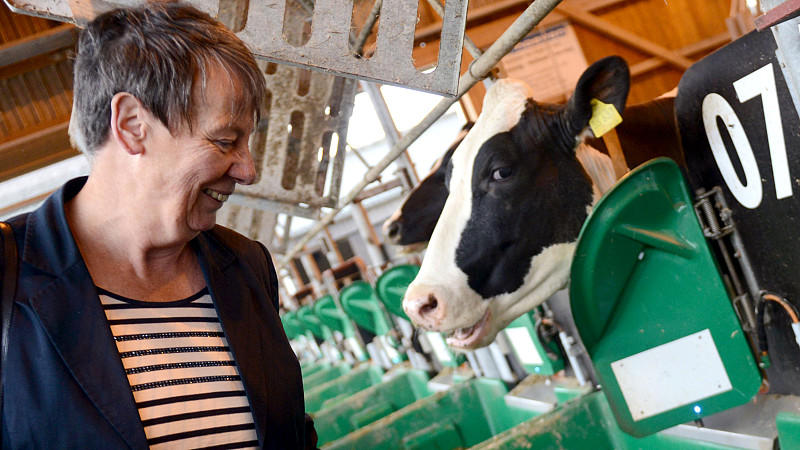 Die Landwirtschaft macht acht Prozent der Treibhausgasemissionen in Deutschland aus. 26 Prozent davon entfallen auf die Tierhaltung, vor allem auf den Methanausstoß bei der Verdauung.