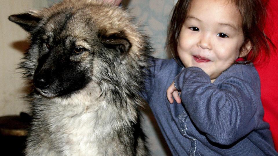 Ein tapsiger Begleiter hielt Karina nachts warm und rettete ihr damit wohl das Leben: Schäferhund-Welpe Naida.